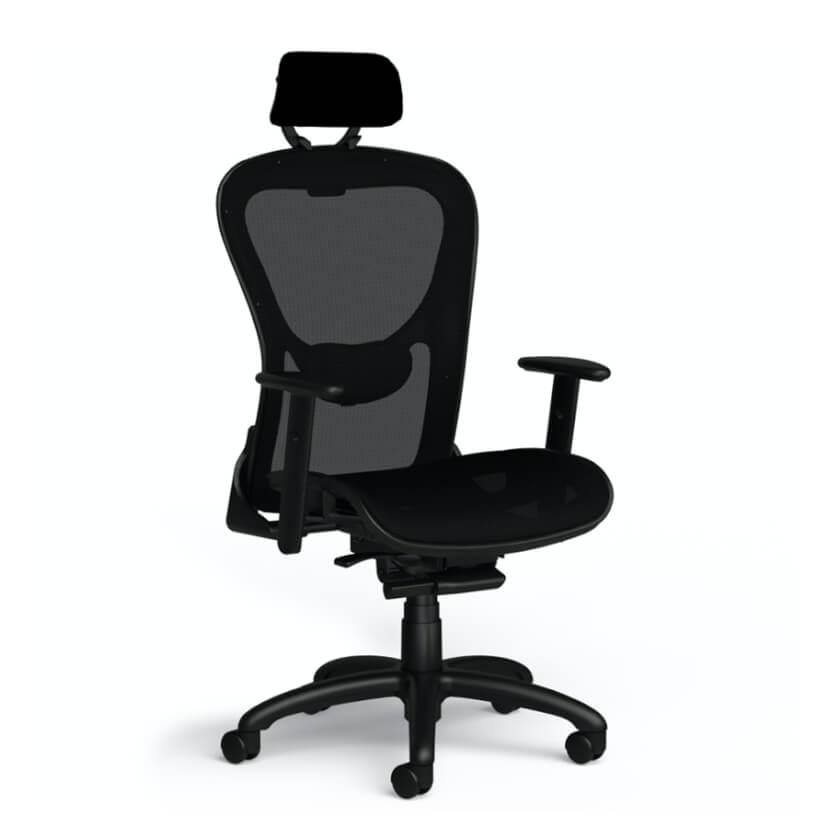 Ergo Comfort Task Chair