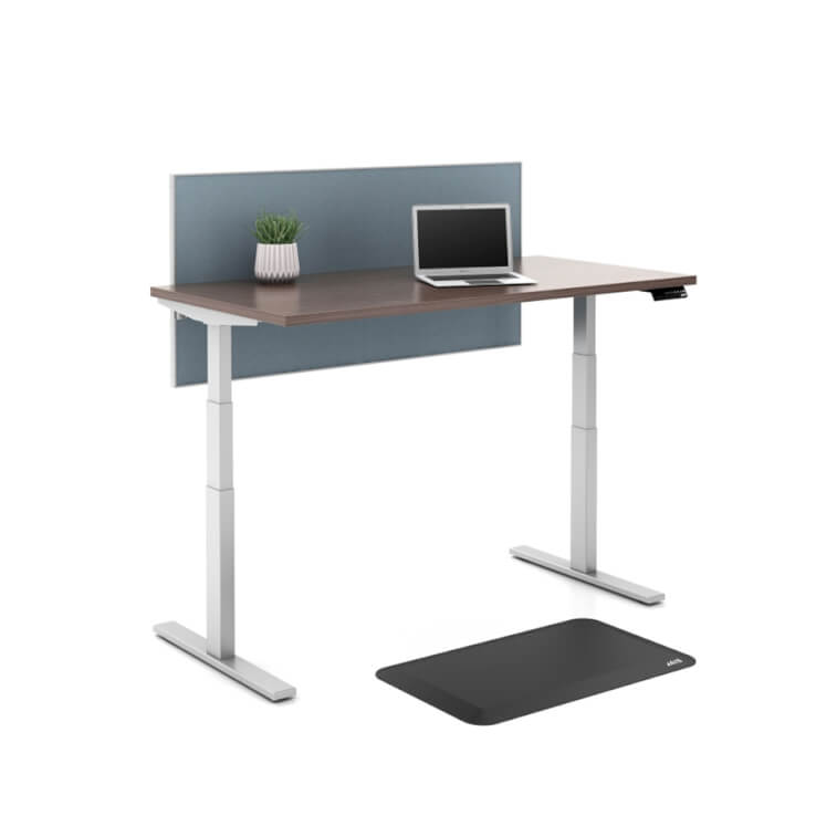 Daylight Adjustable Desk